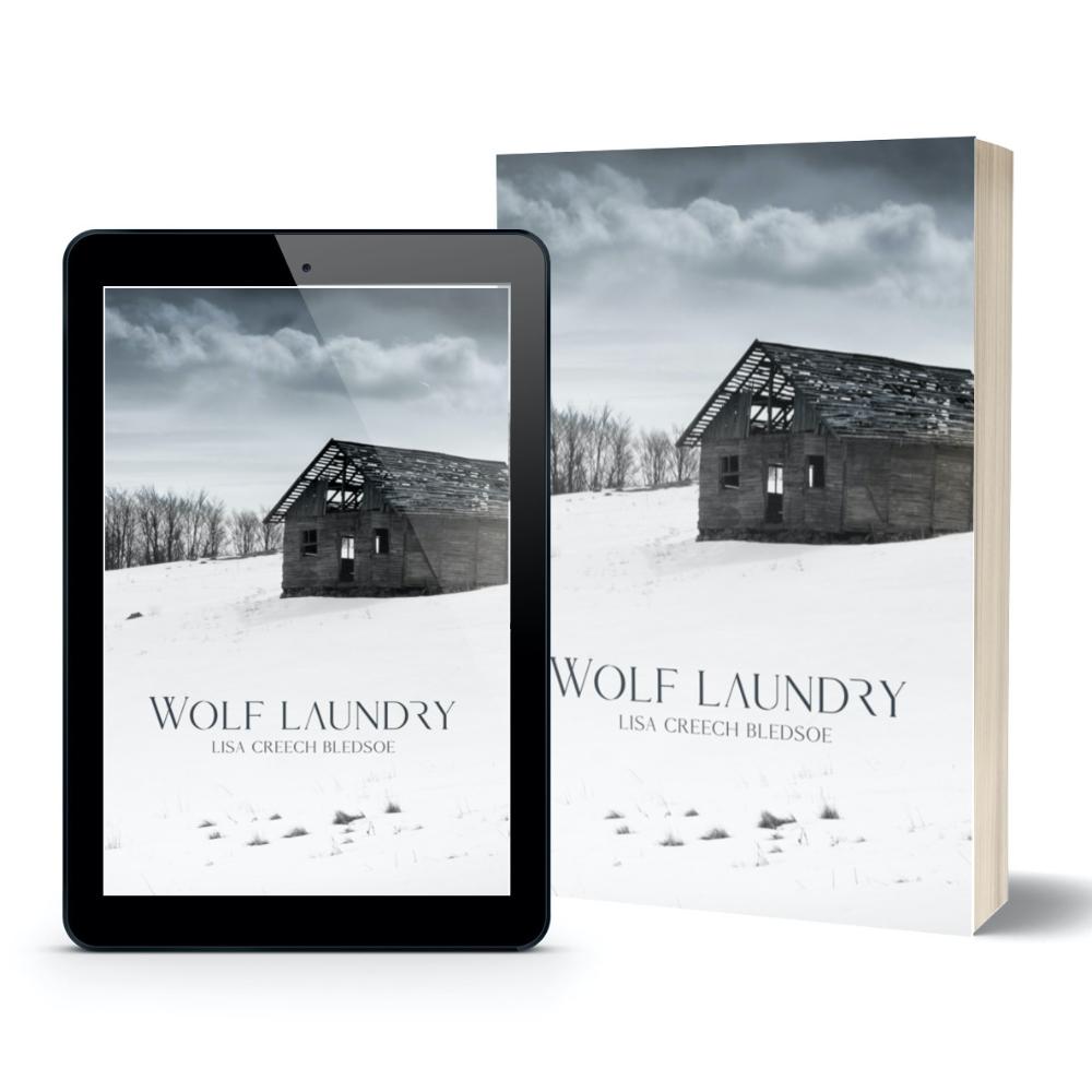 Wolf Laundry